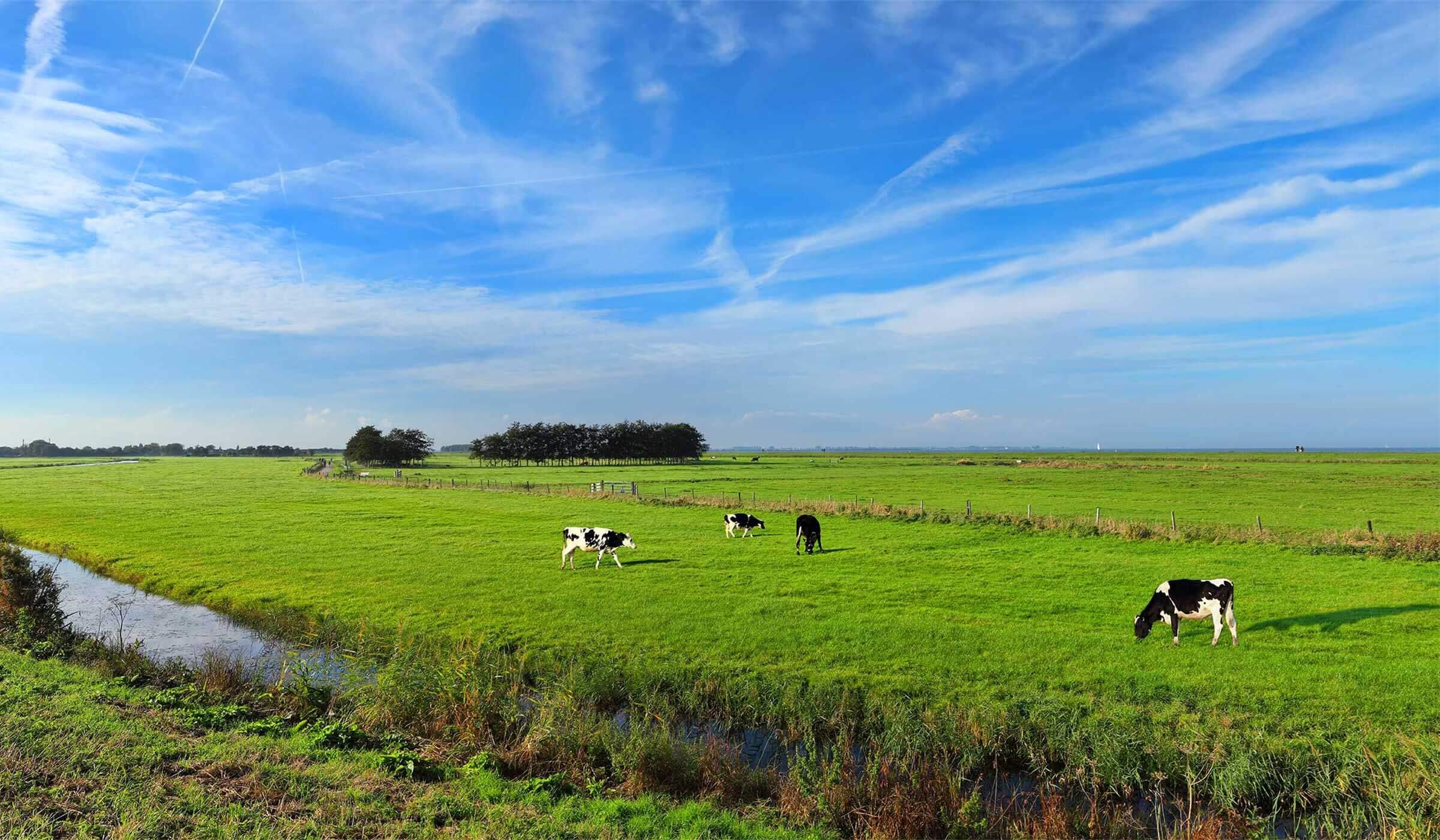 The Citadel Company_Vrijkomende Agrarische Bebouwing (VAB)
