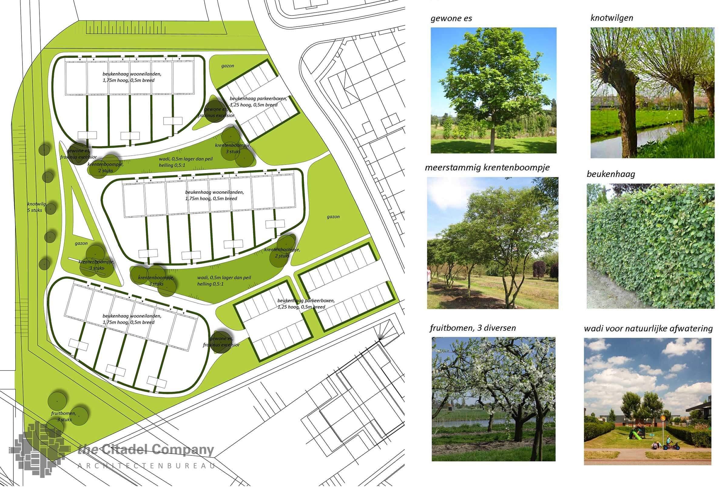 Stedenbouwkundig plan Vrij Werkeren Zwolle_Beplantingsplan